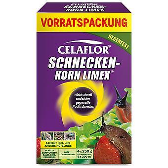 SUBSTRAL® Celaflor® wapień ślimakowy, 4 x 250 g
