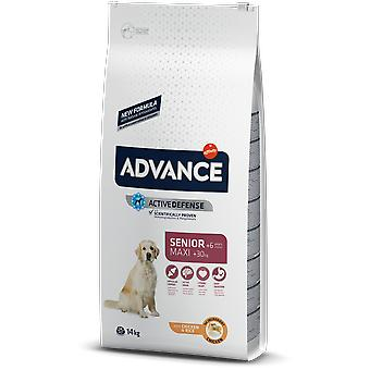 Advance Maxi Senior Chicken & Rice (Dogs , Dog Food , Dry Food)