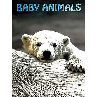 Baby Animals by Paul Sterry - 9781422241653 Book