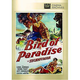 Bird of Paradise [DVD] USA import