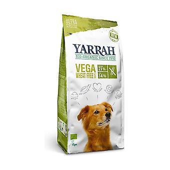 Comida vegetariana / vegana sem trigo dog 2 kg