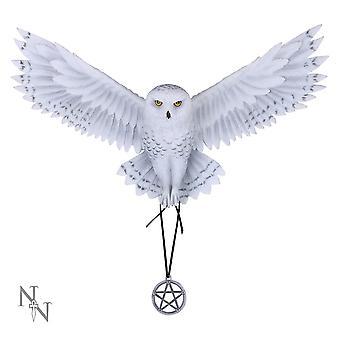 Awaken your Magic Fairy Figurine