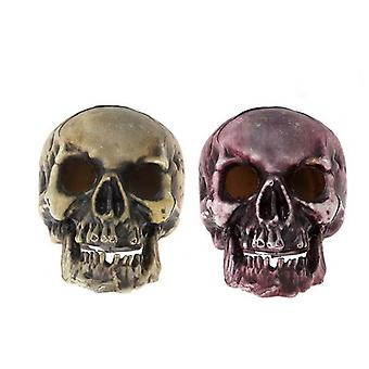 Skull (20 x 15 cm) Light