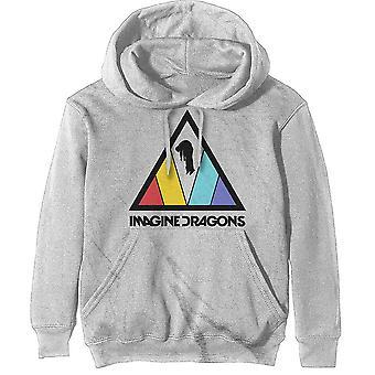 Stel je draken unisex pullover hoodie voor: driehoek logo