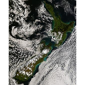 Satellite view of New Zealand Poster Print