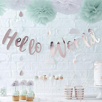 Paper Pom Poms Mint Green & White Tissue Paper Hello World Baby Shower x 5