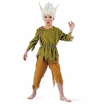Eleven boys costume Elf troll fairy tale Childs costume