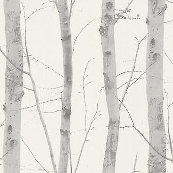 Brzoza Drzewo Tapety srebrny biały szary Deluxe teksturowanej winylu Glitter tropikalne