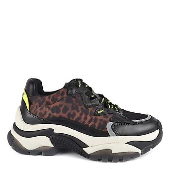 Ash Footwear Addiction Cheetah Print Sneakers
