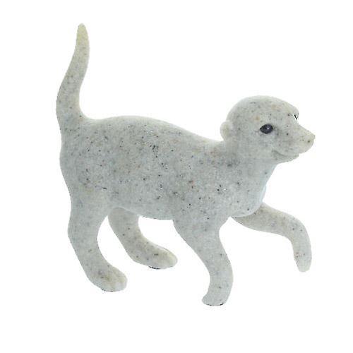 Grey Strolling Meerkat