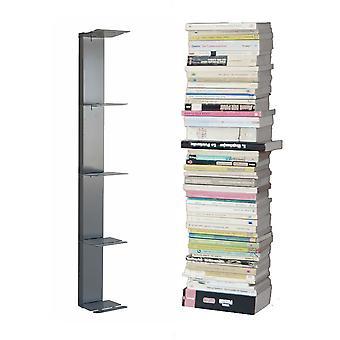 Radius Booksbaum Wandregal Silber 2 klein - 724 c