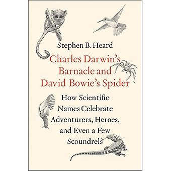 Charles Darwins Barnacle and David Bowies Spider by Stephen B Heard