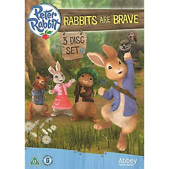 Peter Rabbit: Rabbits Are Brave DVD