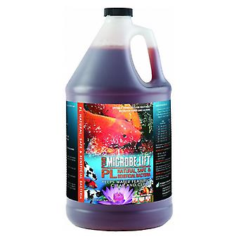 Microbe Lift PL Beneficial Bacteria for Ponds - 1 Gallon (Treats 80,000 Gallons)