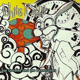 Jay Gordon & the Penetrators - White Rabbit [CD] USA import
