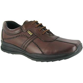 Cotswold Mens Cam lederen waterdichte Casual Oxford schoen bruin