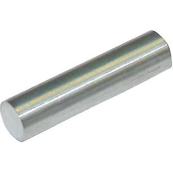 StandexMeder Electronics 4003004025 Permanent magnet Rod (Ø x L) 3 mm x 4 mm SmCo 1.24 T Temperature limit (max.): 250 °C