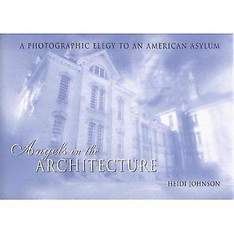 Anges dans l'Architecture: une élégie photographique dans un asile américain (grands lacs livres) (Great Lakes Books Series)