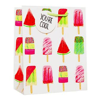 Simon Elvin Matt Ice Cream Gifts Bags (Pack of 6)