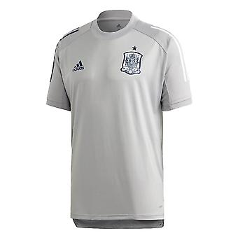 2020-2021 Spain Adidas Training Jersey (Grey)