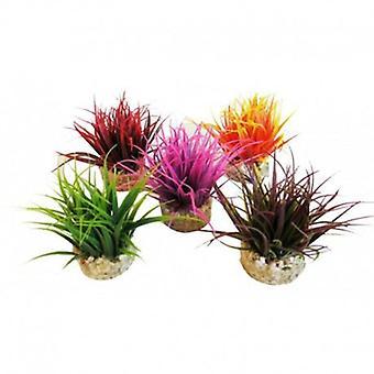 Sydeco Aqua Nano MOs Sydeco (Poissons , Décoration , Plantes artificielles)