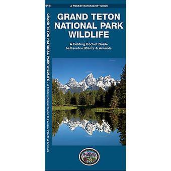 Grand Teton National Park Wildlife - A Folding Pocket Guide to Familia