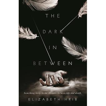 The Dark inBetween by Hrib & Elizabeth