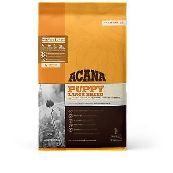 Acana Puppy Large Breed (Dogs , Dog Food , Dry Food)