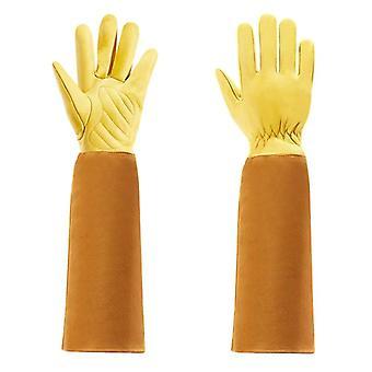 Zahradnické rukavice a muži