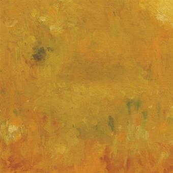 Bevel - Where Leaves Block the Sun [CD] USA import