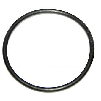 "S.R. Smith HS002 2"" O-Ring for Stainless Heat Sink"