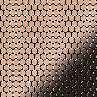 Metal mosaic Copper ALLOY Penny-CM
