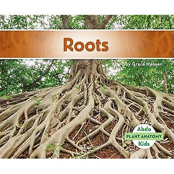 Roots by Grace Hansen - 9781680801385 Book