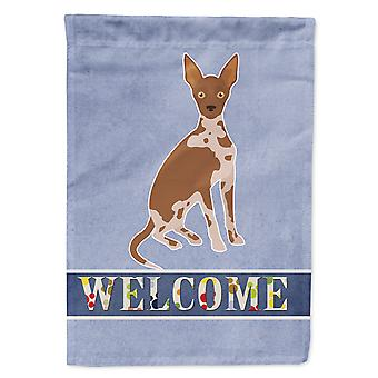 Tan Abyssinian or African Hairless Dog Welcome Flag Garden Size