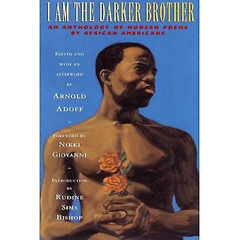 Jestem bratem ciemniejszy: antologia nowoczesnej poezji przez Afroamerykanów