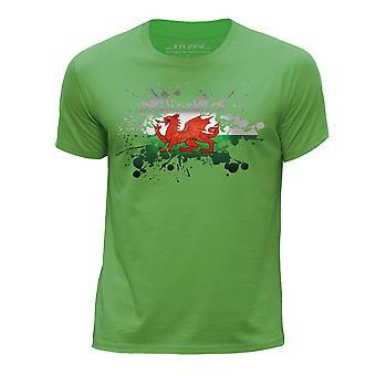 STUFF4 Boy's Round Neck T-Shirt/Wales/Welsh Flag Splat/Green