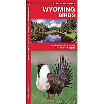 Wyoming Birds: An Introduction to Familiar Species
