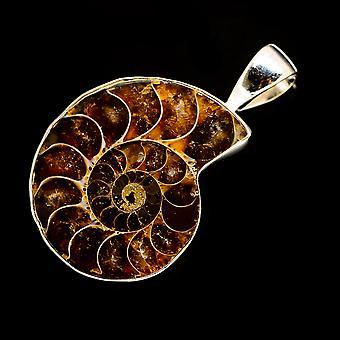 Ammonite Fossil Pendant 1 1/2