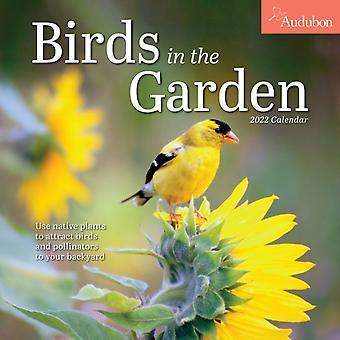 Audubon Birds in the Garden Wall Calendar 2022 by National Audubon SocietyWorkman Calendars