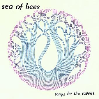 Sea of Bees - Songs for the Ravens [CD] USA import