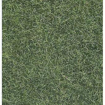 Grasslands NOCH 07102 Light green