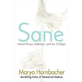 Sane: Mental Illness, Addiction and the 12 Steps