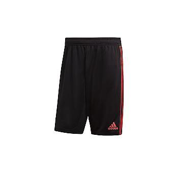 Adidas Manchester United CW7601 universal durante todo o ano calças masculinas