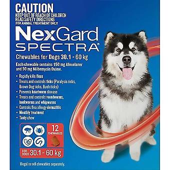Nexgard Spectra XL 30 - 60 kg (66 - 130 lbs) - 12 pack