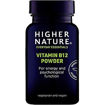 Mayor naturaleza Vitamina B12 Polvo 30g (SB12H)