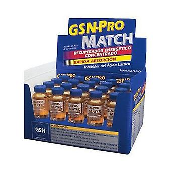 GSN-Pro Match 20 vials of 30ml