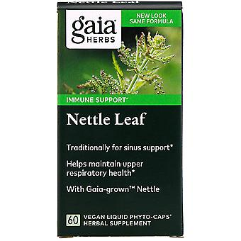 Gaia Herbs, Nettle Leaf, 60 Vegan Liquid Phyto-Caps