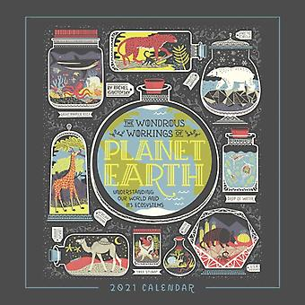 Wondrous Workings of Planet Earth 2021 Wall Calendar by Rachel Ignotofsky