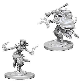 D&D Nolzur's Marvelous Unpainted Minis Female Tiefling Warlock (Pack of 6)