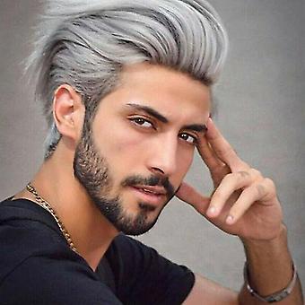 Mænd smuk sølv grå paryk kort syntetisk hår mandlig cosplay part fuld parykker halloween gave